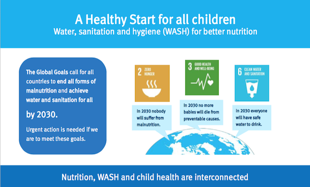 WASH & Nutrition Infographic